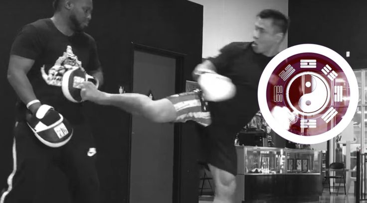 Cung Le Spin Strike Training, Cung Le Spin Strike, Martial Arts, Mixed Martial Arts, BJJ, Kickboxing, KungFu, Cung Le Spin Kick, Cung Le Spinning Back Fist