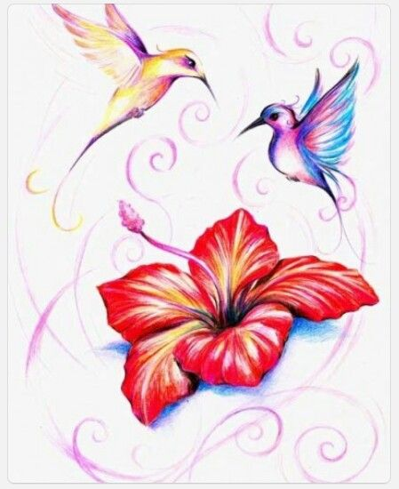 Humingbirds And Hibiscus Flower Tattoos Pinterest