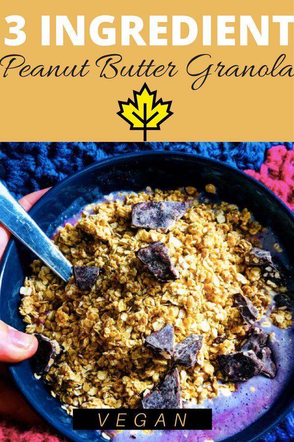 3 Ingredient Vegan Peanut Butter Granola - Wine & Misadventures