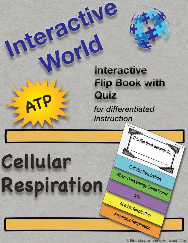 Grades 7-12 Flip Book Includes: Skeleton Note Student Version and teacher key with color coded notes detailed diagrams * Factors that Affect Photosynthesis * Autotrophs and Heterotrophs * Light Dependent Reactions * The Calvin Cycle * Energy Flow Through The Environment * Where Does Energy Come From? * Production of ATP * Aerobic Respiration * Anaerobic Respiration #TpT #CellularRespiration #FlipBook #Photosynthesis #InteractiveWorld