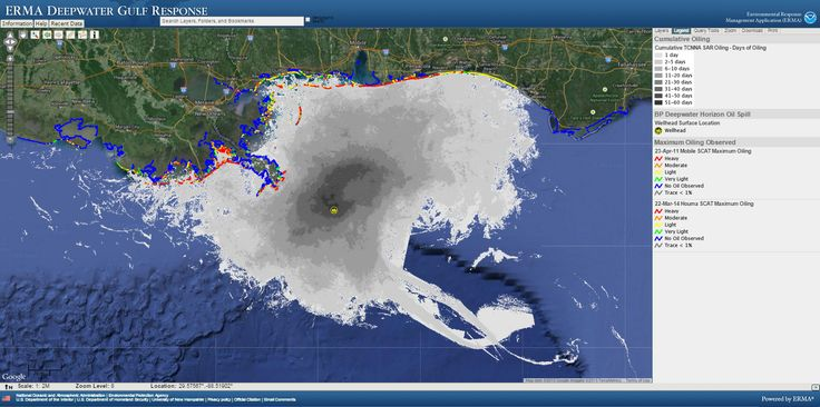 In Mapping the Fallout from the Deepwater Horizon Oil Spill, Developing One Tool to Bring Unity to the Response