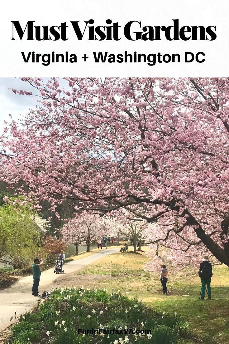 Gardens To Visit In Washington Dc