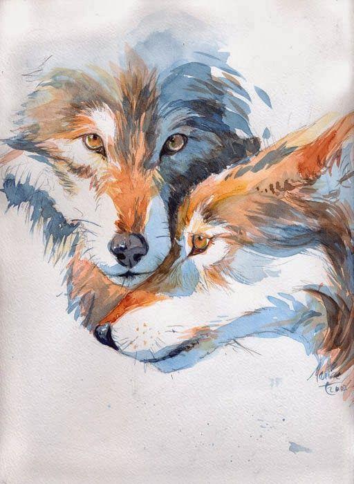 Illustratrice - Dessinatrice BD - Auteure - Coloriste BD Marine Tumelaire: Loup…