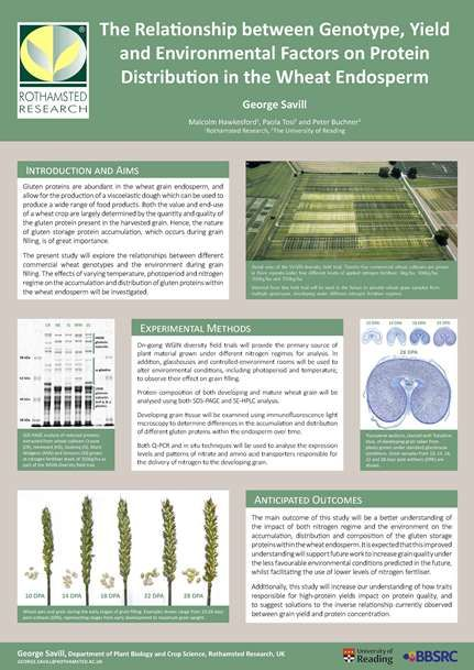 Best 25+ Research poster ideas on Pinterest Academic poster - research poster