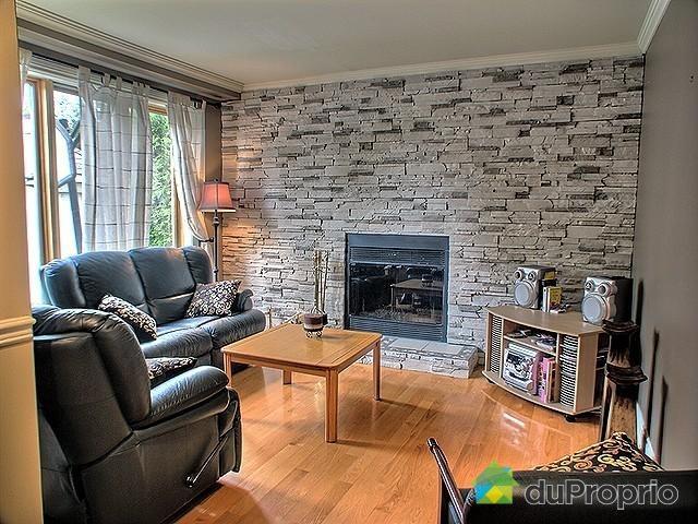 Salle de sjour  Foyer au bois avec mur de pierres