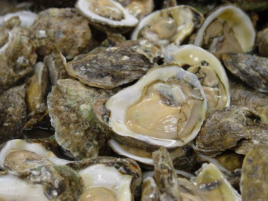 An old wives take says Don't Eat Oysters in Months Without 'R' In The Name. True? And what are the nutritional benefits of oysters?
