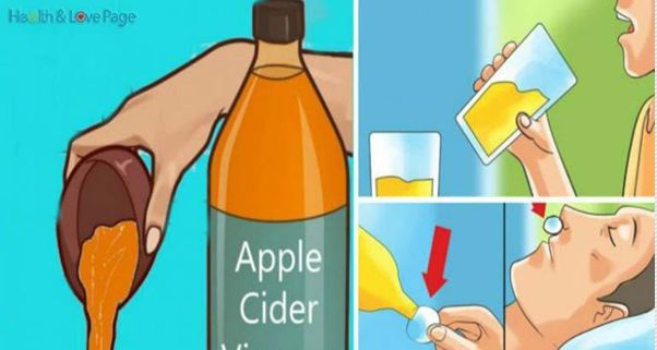 The apple cider vinegar has a vast number of usages, from pies, pickles to salads. However, it could also be used for drinking. Although surprising, if you drink some amount of it before going to bed, you can greatly improve your overall life and health. The apple cider vinegar can treat the following purposes: 1.Treats sore throat This vinegar will create an...