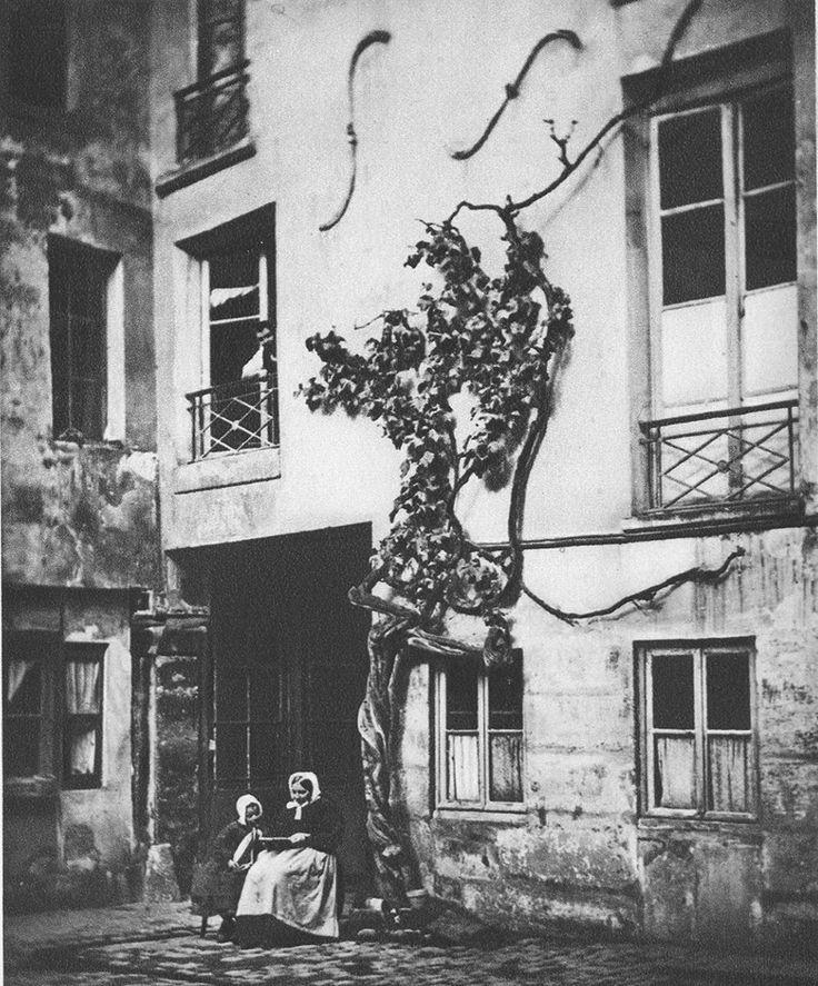 """Voici la fameuse """"Vigne de Racine"""", 13 rue Visconti, en 1860. La légende veut que ce serait Racine même qui l'ait plantée. Elle a été arrachée en 1883 par le nouveau propriétaire des lieux... Une photo du grand Nadar!"""