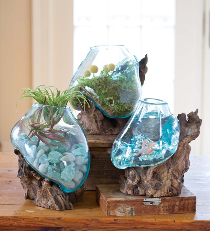 I saw these in person when we were vacationing, but didn't buy it.  But I thought it would make an awesome fish bowl for a Betta.  #betta bowl #fish bowl Handcrafted Glass and Reclaimed Wood Sculpture