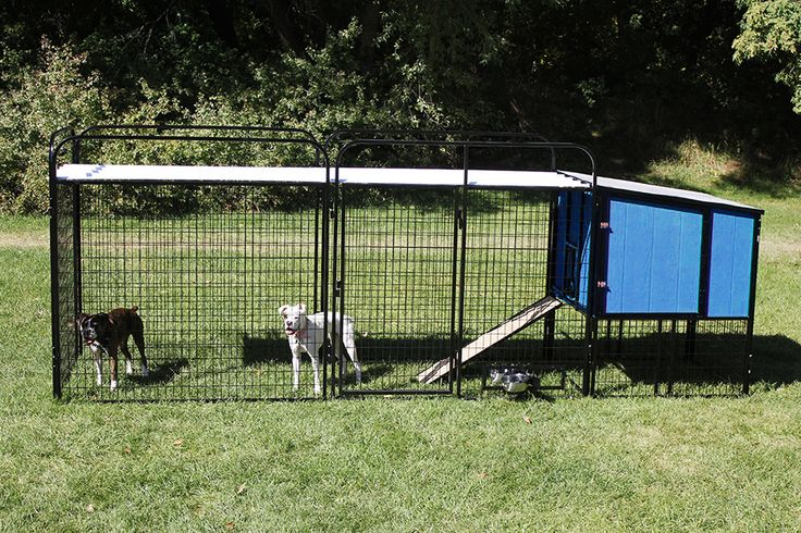 K9 Ultimate Dog House With Large Dog Run And Custom Blue
