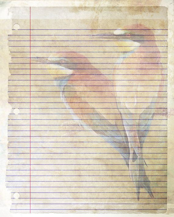 printable journal page  bird writing lined stationery  8 x