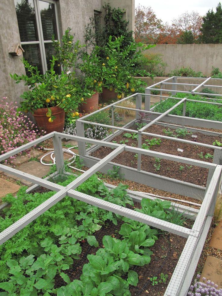 Garden Covers For Vegetables Part - 48: Best 25+ Deer Netting Ideas On Pinterest | Grow Room Design, Garden Netting  And Vegetable Garden Fences