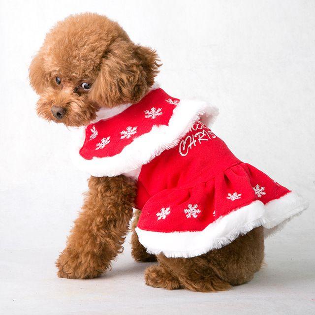 Hunde Mode