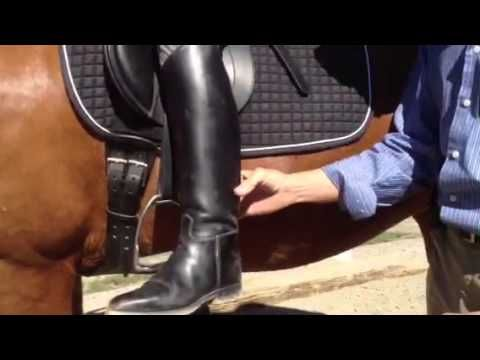 Correct Leg Aids to Engage the Horse's Back    1. impulse to get the horse to move forward (like karate chops, same time each leg).  2. pressure from one leg to move the hind quarters (laterally).  3. collection, a little pluck below line of barrel.