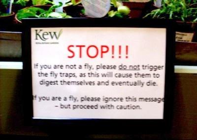 .: Random Pictures, Flying Traps, Mild Humor, Venus Flying, Funny Signs, Funny Pictures, Funny Stuff, Humor Signs, Carnivorous Plants