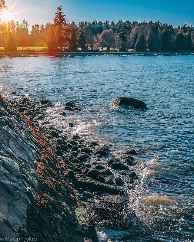 Sunset walk at seawall #seawall #walk #sunset #stanleypark #vancouver #veryvancouver #dailyhivevan #explorebc