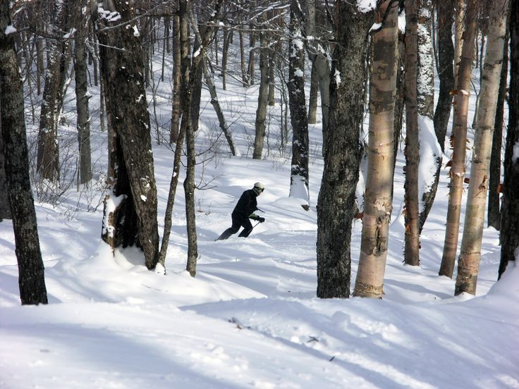 Glades skiing at Stratton ski resort in southern Vermont.