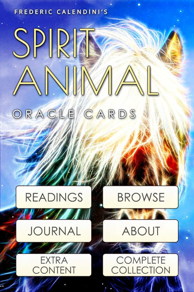 Spirit Animal Oracle Cards Animals Are Not Only Wonderful Companions