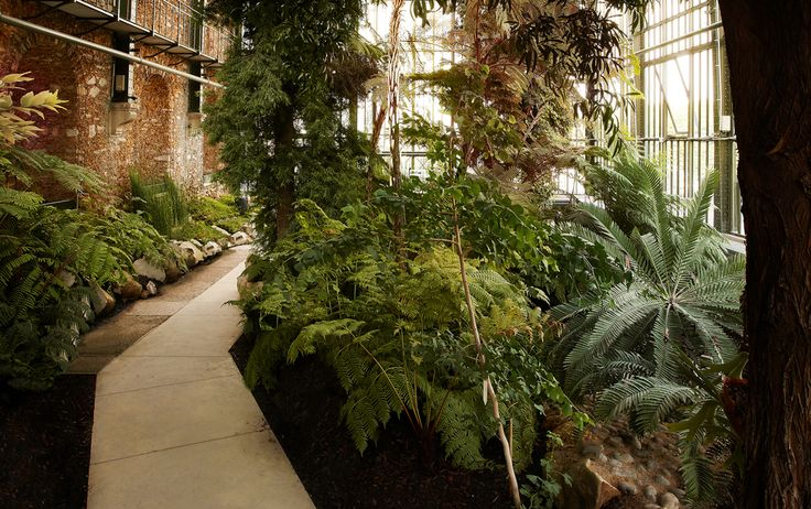 112 best lan architecture images on pinterest town hall for Restaurant jardin des plantes paris
