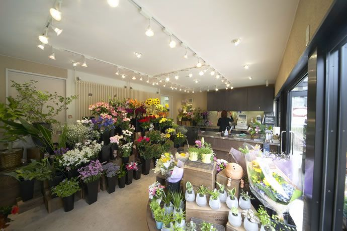 Interior design for a flower shop beautiful things for 720 salon little elm