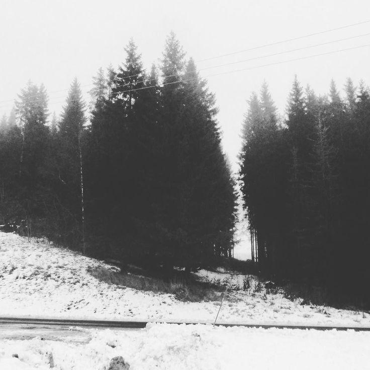 Blur  Trofors Norway #bnw #blackandwhite #blackandwhitephotography #instablackandwhite #norway #igersnorway #igworldclub #ig_photooftheday #instagood #photooftheday #beautiful #instadaily #art #amazing #bestoftheday #travel #instago #all_shots #trip #travelgram #instatravel #traveling #travelling #tourism #travelingram #igtravel #mytravelgram #instatraveling #instapassport #visiting
