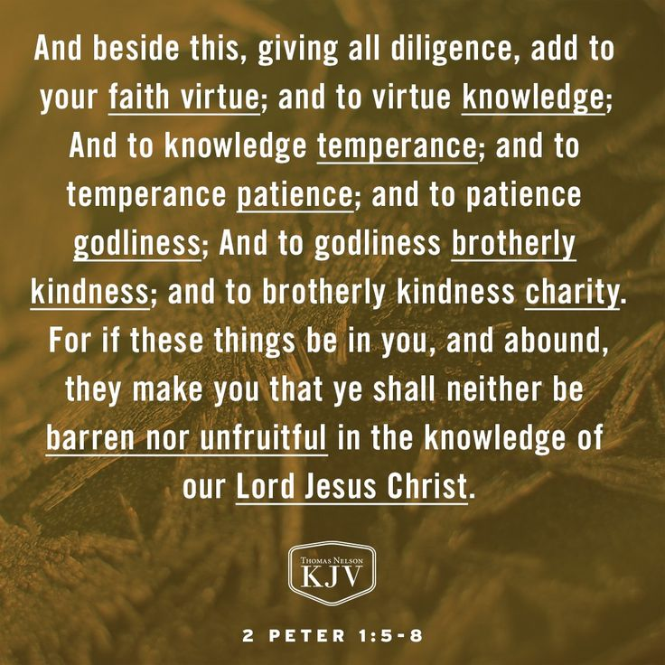 KJV Verse of the Day: 2 Peter 1:5-8