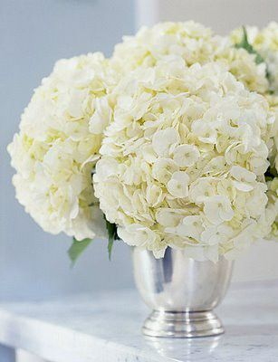 Hydrangeas in silver cups for centerpieces