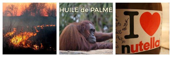 Huile de palme La brioche qui tue qui détruit et enflamme Huile de palme Forêt mise à feu et à sang le pauvre orang-outang n'a plus de larme  Les hommes ont allumé l'enfer pour y brûler leur âme  Huile de palme L'incendie est leur arme. Nu, t'es là ? Pour le bonheur de ton palais tout crame. Huile de palme en Indonésie, le drame…  Les hommes ont allumé l'enfer pour y brûler leur âme  --Nadine Léon.