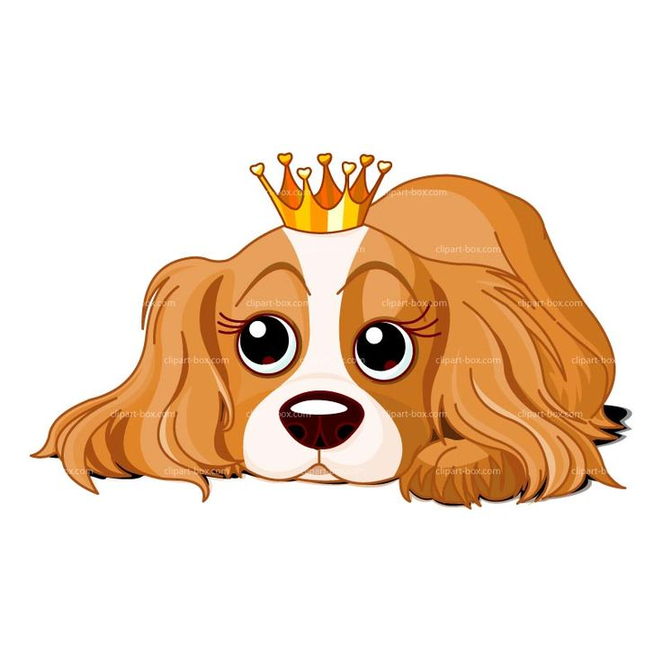 CLIPART DOG WITH CROWN   Royalty free vector design ... (736 x 736 Pixel)
