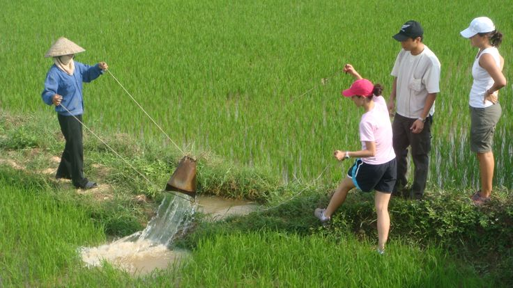 Helping the villagers with daily work. #VietnamSchoolTours #VietnamHomestay #VietnamAdventure