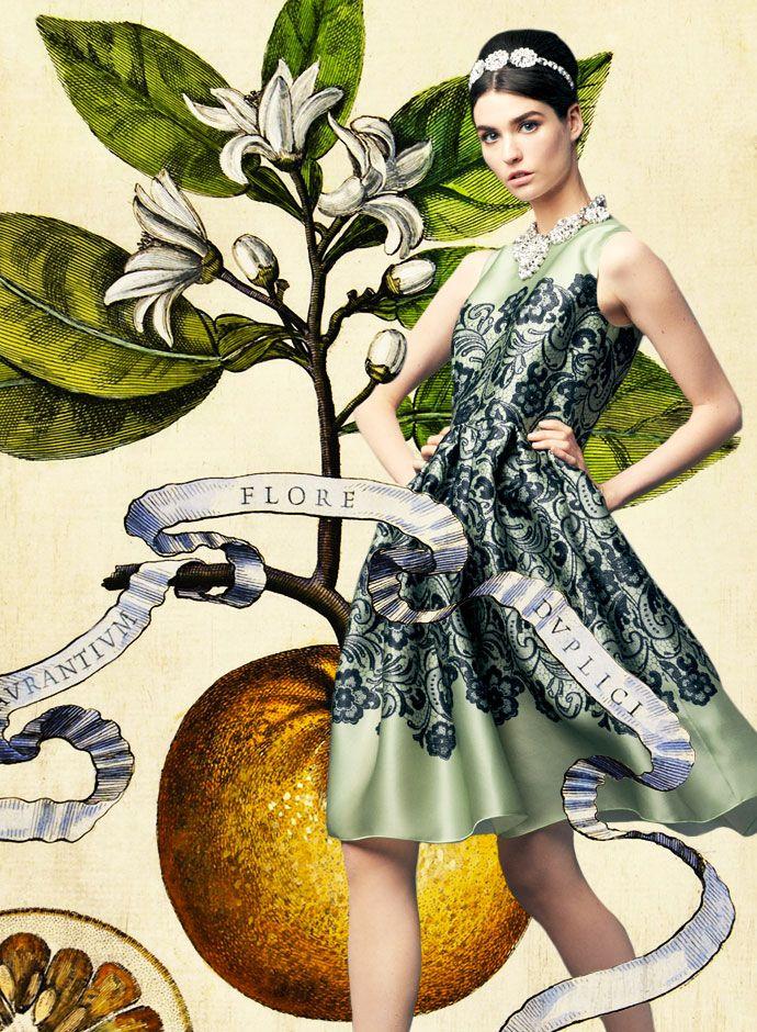 Посмотрите на День Dolce & Gabbana весна-лето 2014 Женская Кружева Печать Зеленый Дюшес платье