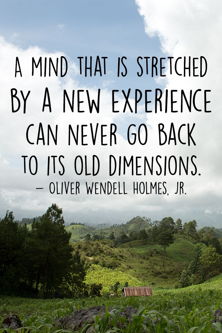 """""""A mind that is stretched by a new experience can never go back to its old dimensions.""""  ― Oliver Wendell Holmes, Jr."""