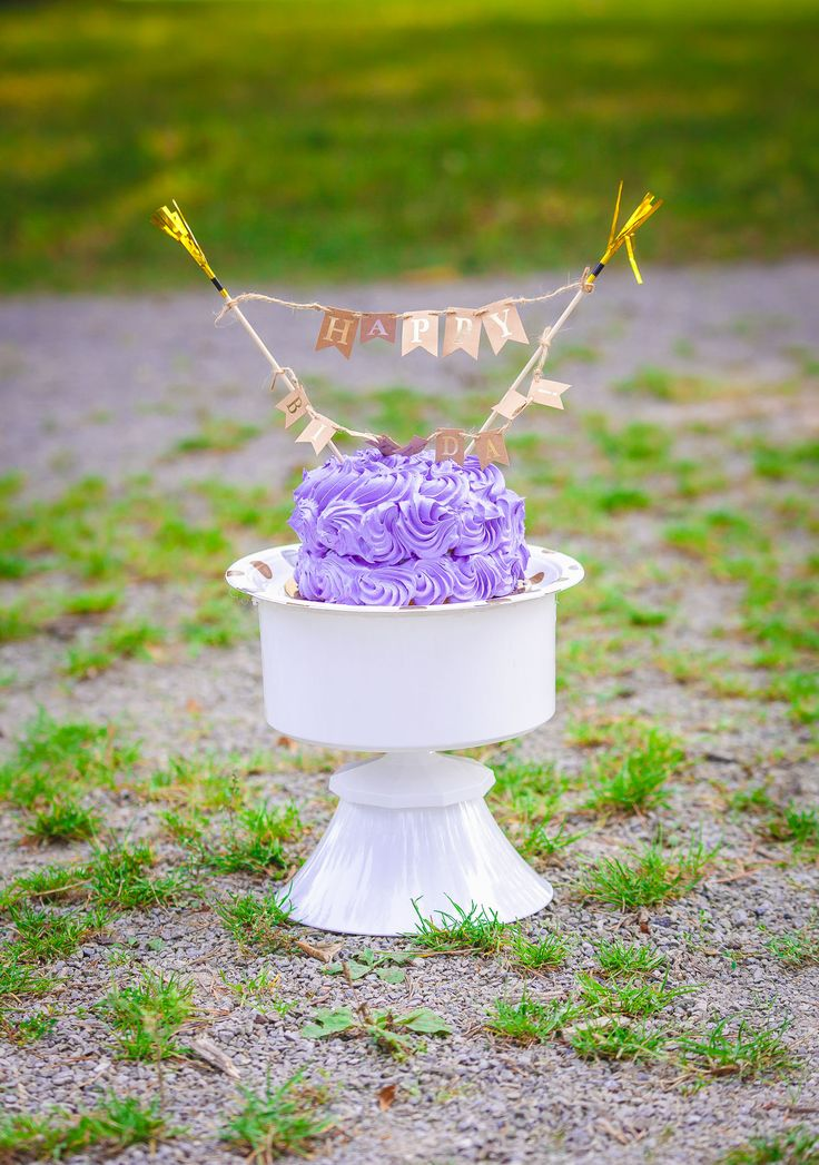 Cake Smash- Purple in the Park