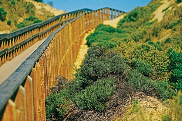 9 Sweet Spots in San Luis Obispo County!