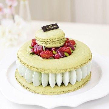 Dalloyau - Macaron de rêve fraise - pistache : Un délicieux macaron à la pistache, crème fouettée et compotée de fraise, gourmandises de fruits rouges.