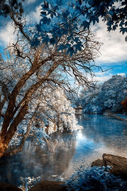 This stunning image of a body of water, trees, and sky reflects the appreciation for nature present within the Romantic movement. Art of this period frequently features beautiful, sublime natural landscapes.