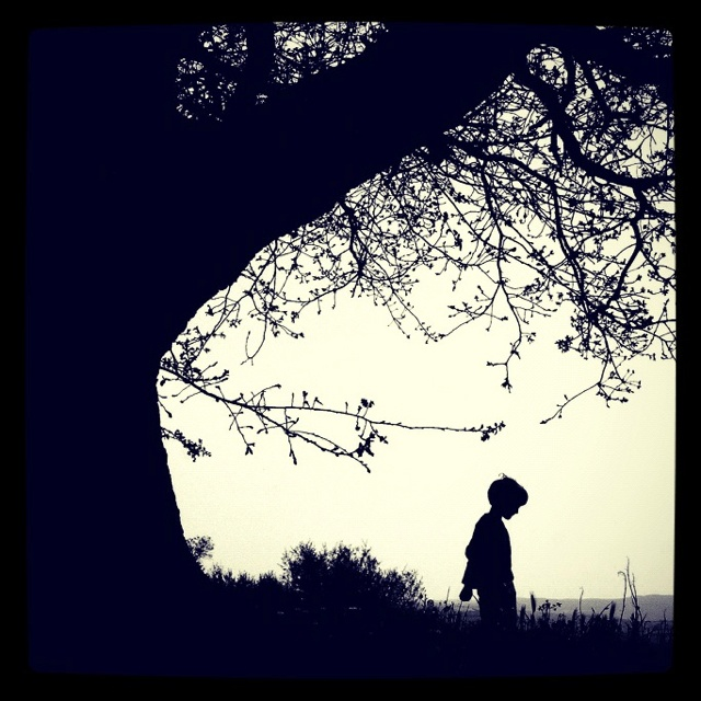 The Child and The Old Tree