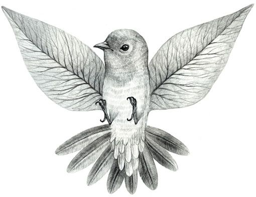 19 Best Images About Beautiful Drawings On Pinterest  Heart Animal And Face