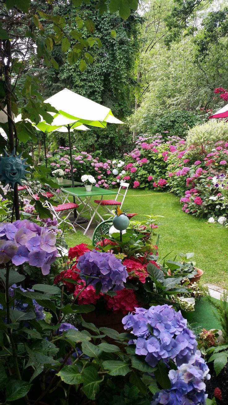 Dinner im Hortensiengarten
