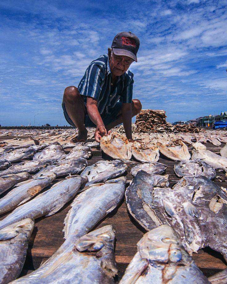 Pembuatan Ikan Asin