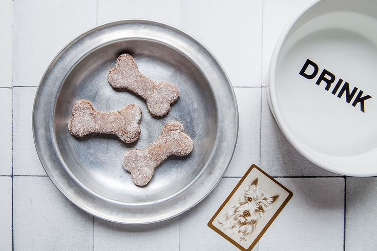 Chicken liver doggy treats