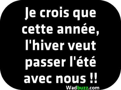 quotes citation