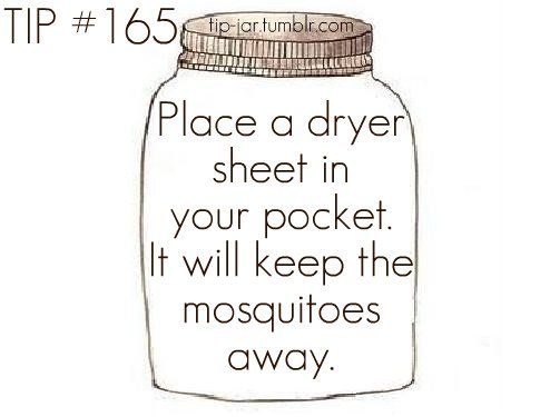 Mosquito repeller. Not sure if it works, but worth a try!