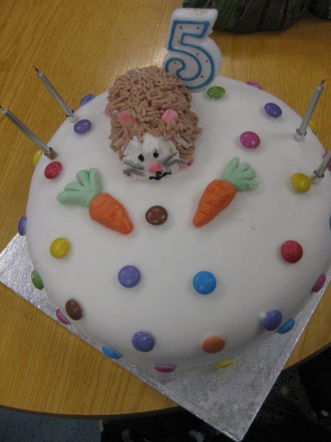 Hamster Cake Children S Birthday Cakes Cake Decorating