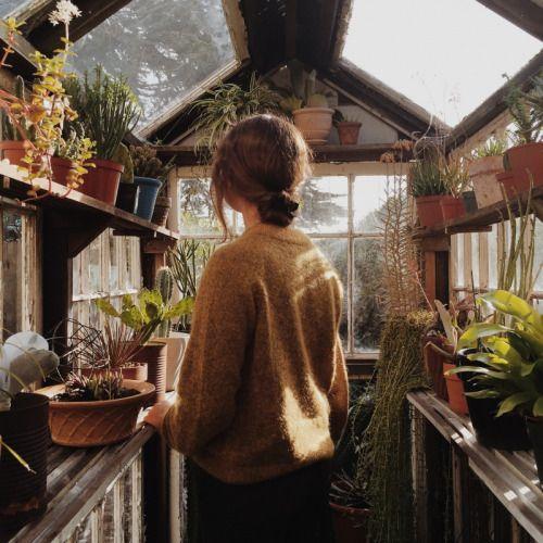 Me gustaría tener un invernadero pequeño, y un jardín no estaría mal tampoco...
