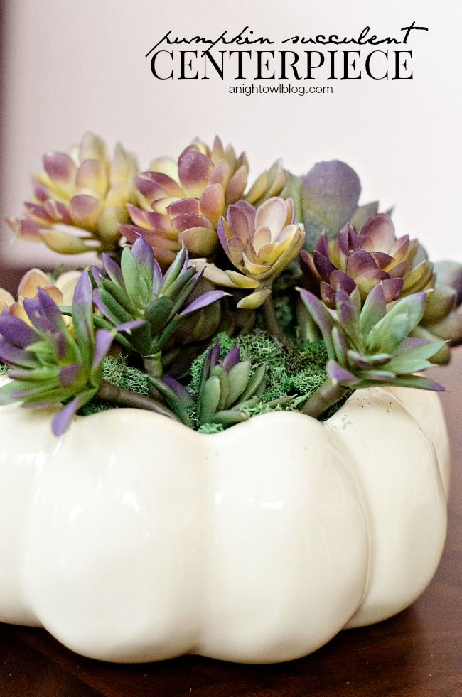 Thanksgiving Tablescape with Succulent Centerpiece http://www.bloglovin.com/frame?post=3689666519&group=0&frame_type=a&context=&context_ids=&blog=3853030&frame=1&click=0&user=0