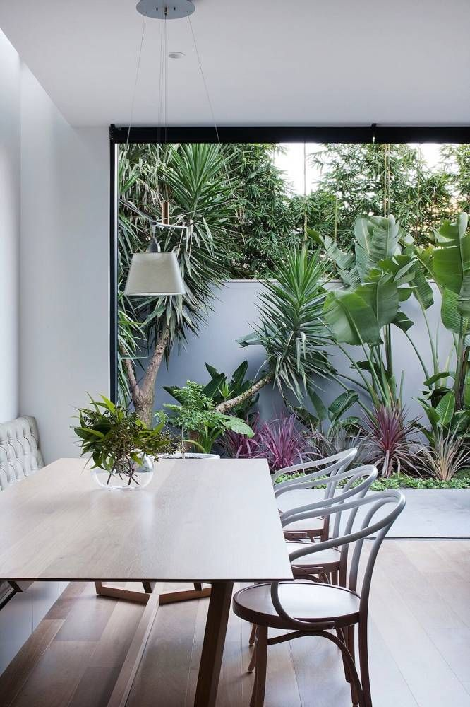 ideal combination of everything we like - also even like the white space between plants - doesn't need to also have a green wall behind it. like the idea of seeing this out our window as well.
