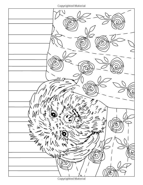 Amazon.com: Special Shih Tzus: A Cute Dog Colouring Book ...