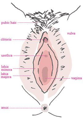 Clitoris iches pregnancy sign