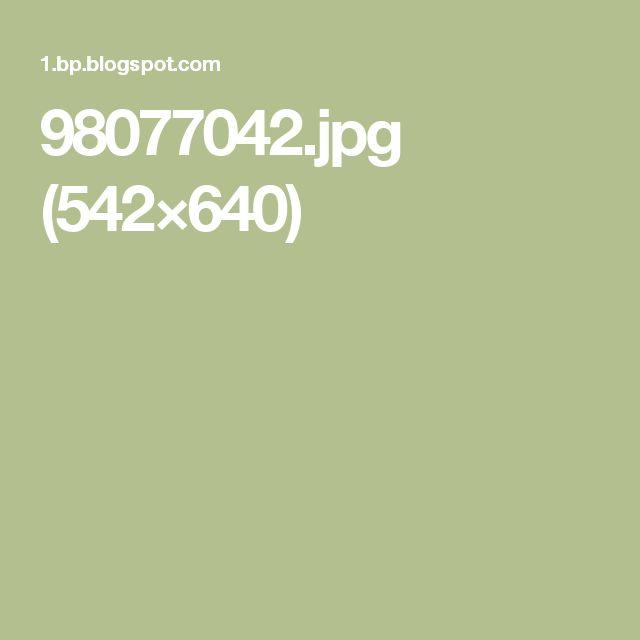 98077042.jpg (542×640)